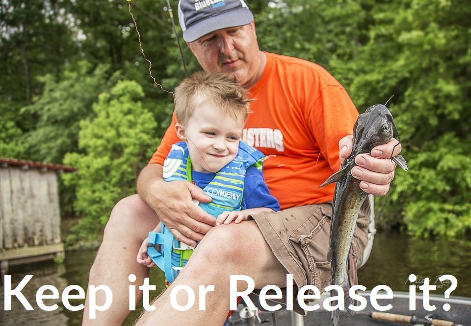 How to get the family fishing - Keep the fish or release it
