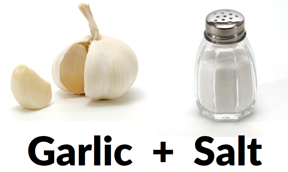 Do fishing lure attractants work - Garlic and Salt