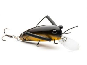 DM Cricket Lures Big Wooden Black Yellow