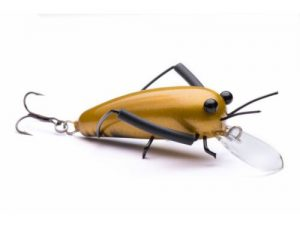 DM Cricket Lures Big Wooden Gold