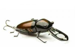 DM Cricket Lures Medium Stag Beetle Brown