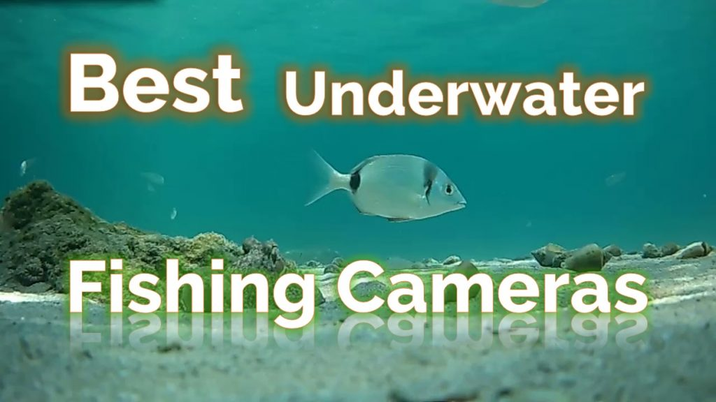 Best Underwater Fishing Cameras For 2019 - Featured picture