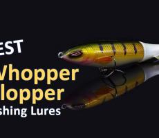 Best-whopper-plopper-fishing-lures-thumbnail