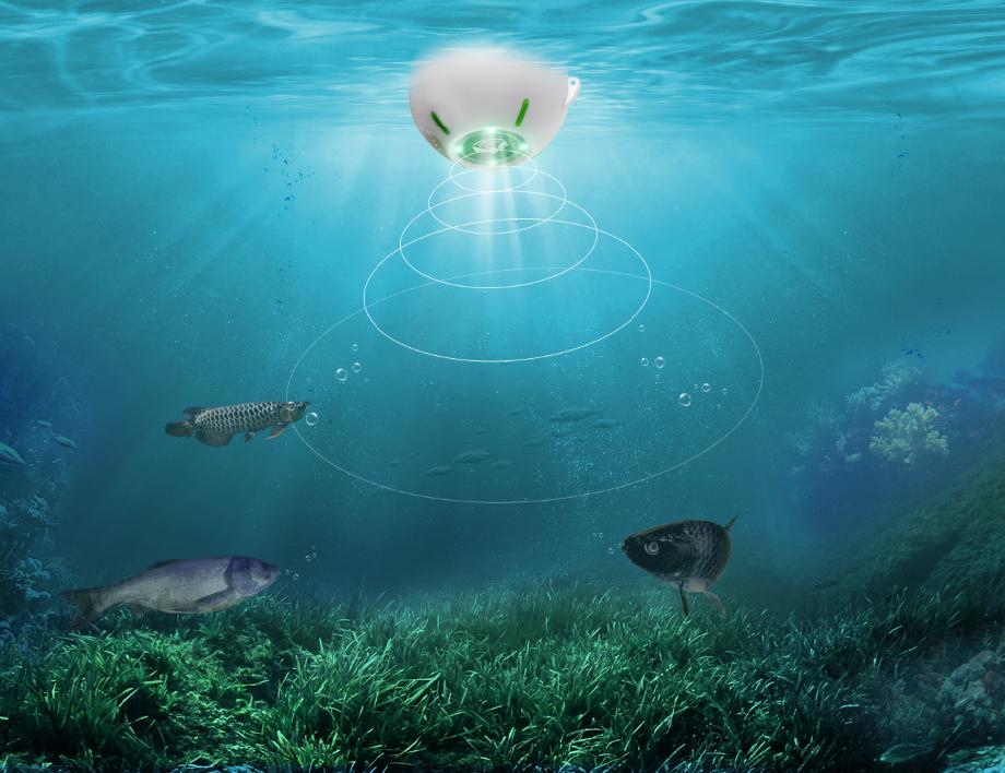 Joylog Smart Fish Finder Sonar - Detecting fish