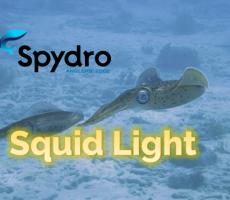 Spydro Squid Light