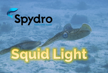 Spydro Squid Light