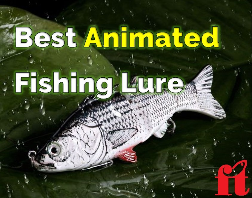 Best Animated Lures The Best Robotic Fishing Lures Finish Tackle