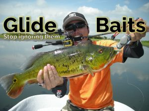 Glide Baits - Catch monster bass