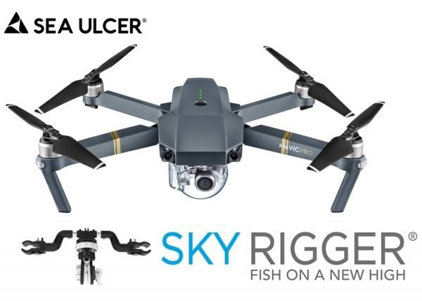 Sky Rigger For Mavic Drone - featured image